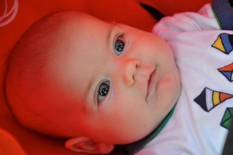 4 months old- Austin Sunset